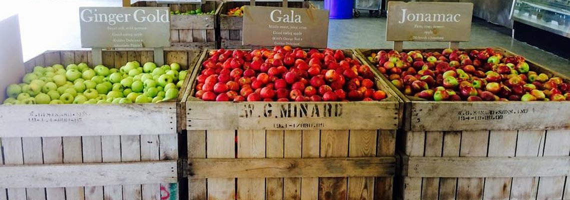 U pick apples New Paltz Hudson Valley