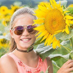Pick Sunflowers